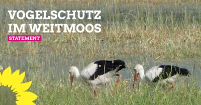 Vogelschutz im Weitmoos - Statement